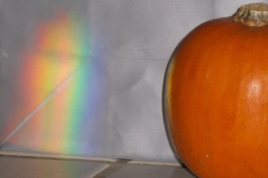 Rainbow and Pumpkin by Elizabeth W.